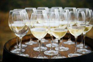 Правила виноделов: ошибка, ставшая легендой